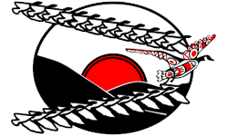 BC Association of Aboriginal Friendship Centres